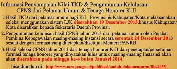 Pengumuman Hasil Tes Seleksi CPNS 2013