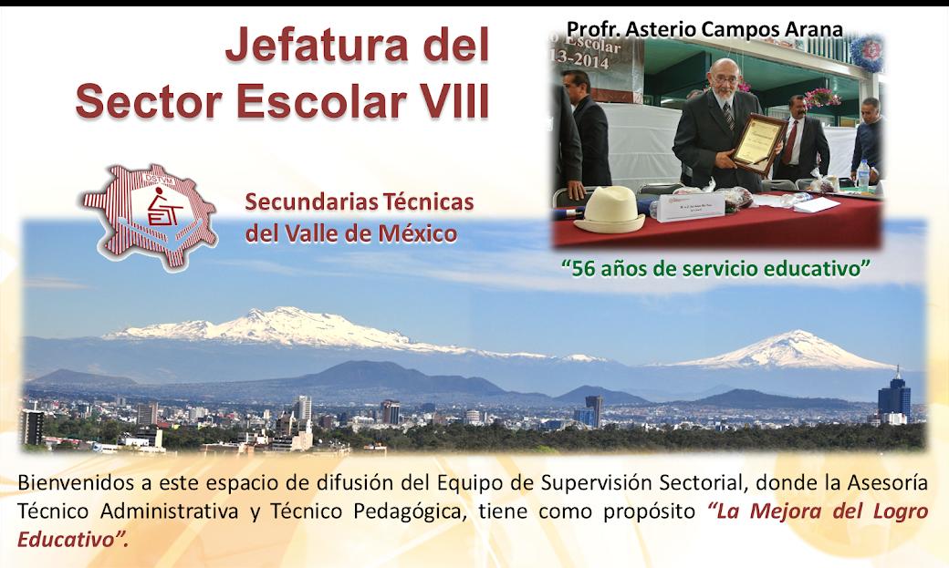 JEFATURA DEL SECTOR ESCOLAR VIII