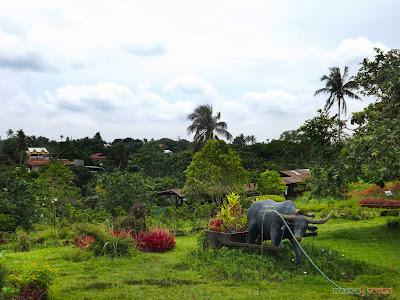 Mango Tours Tagaytay Paradizoo overlooking Paradizoo