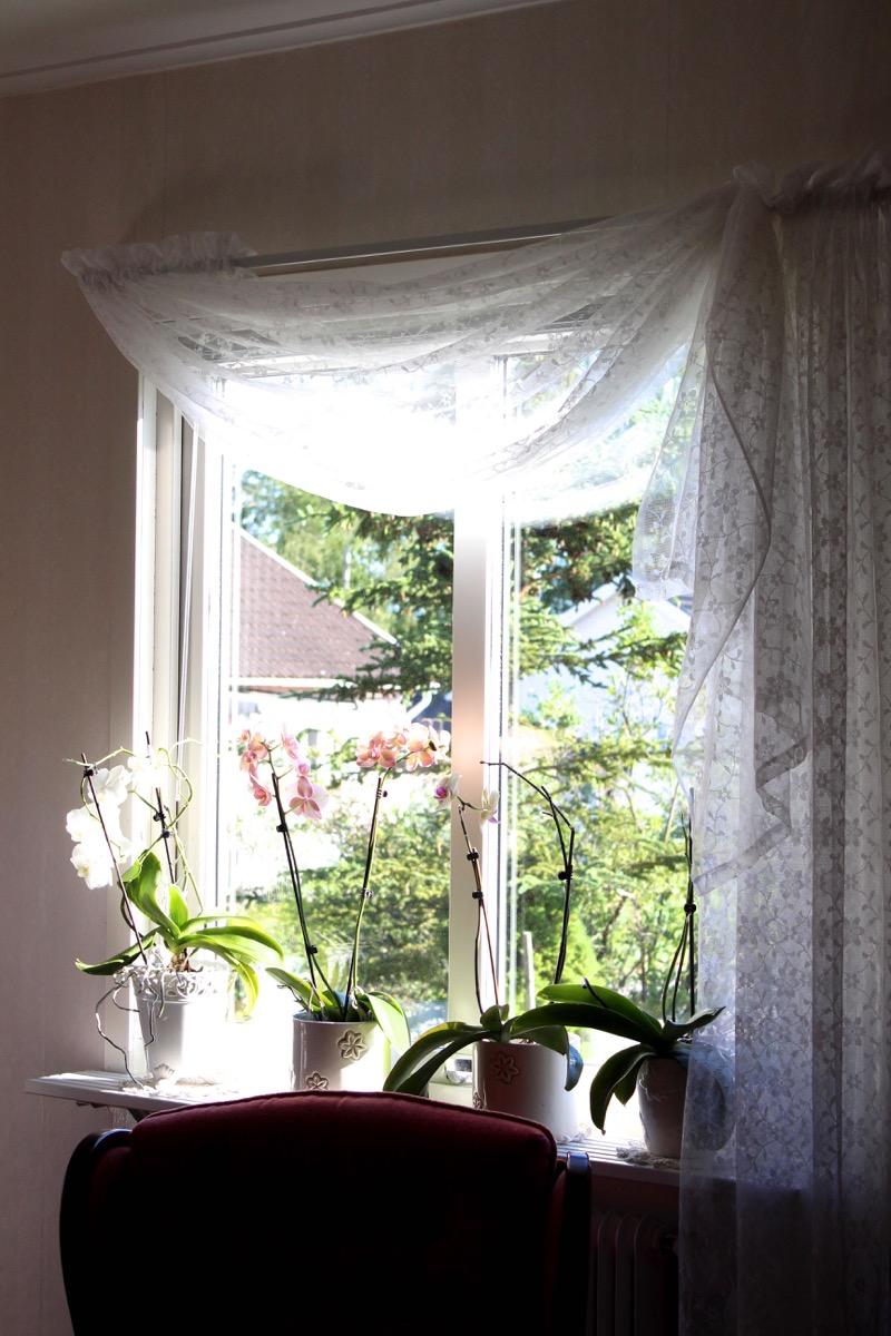 Ihastuttava vanhanajan ikkuna