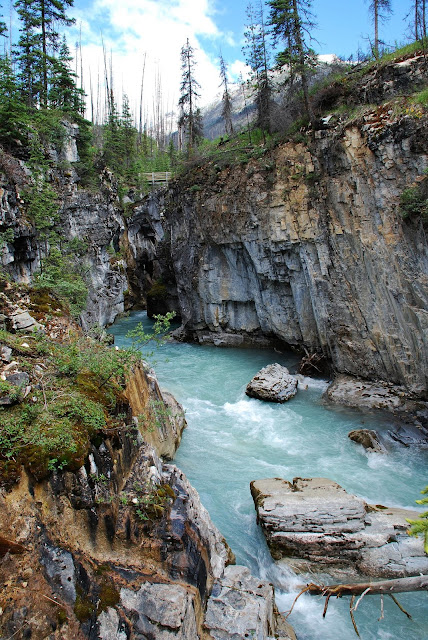 Kootenay National Park Canada Natural Creations