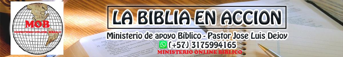 BIBLIA EN ACCION