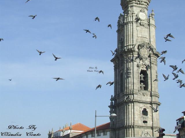 Torre dos Clérigos acabou de comemoram 250anos da sua existência. A sua originalidade torna-a um ex libris da cidade. A liberdade com que as pombas a contornam transformam esta fotografia em magica da natureza, tal como acontecimentos únicos, desejáveis, mágicos, que se eternizam ao longo da vida.