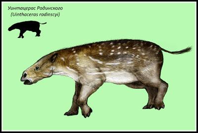mamiferos antidiluvianos Uintaceras