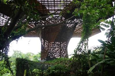 parque botanico de medellin