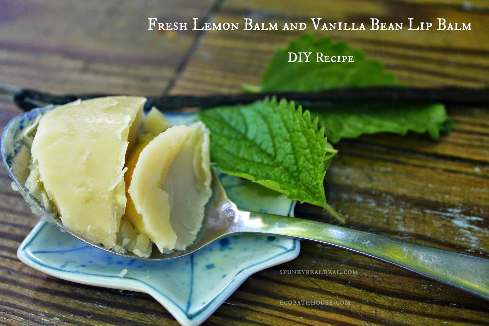 Fresh lip balm recipe {vanilla bean and lemon balm}