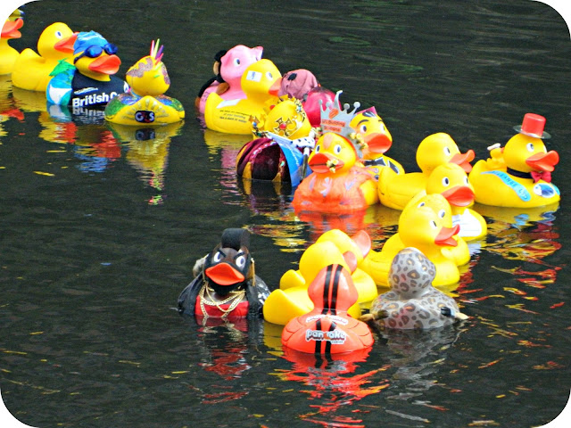 Rubber Ducks Duck Race Fancy Dress Charity SPinningfields Manchester Brainwave