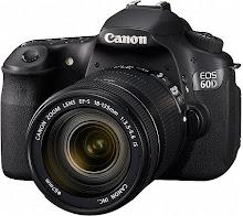 Bloggens alla bilder är fotade av mig och med denna kamera.