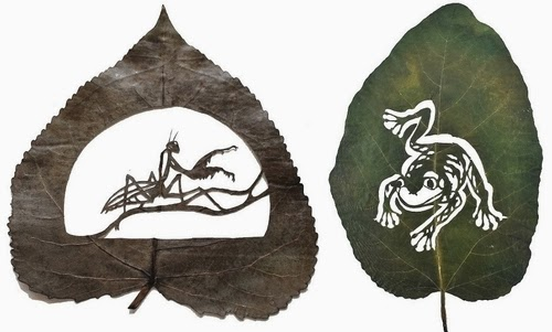 00-Animals-Cut-Leafs-Lorenzo-Manuel-Durán-Art-and-Nature-www-designstack-co