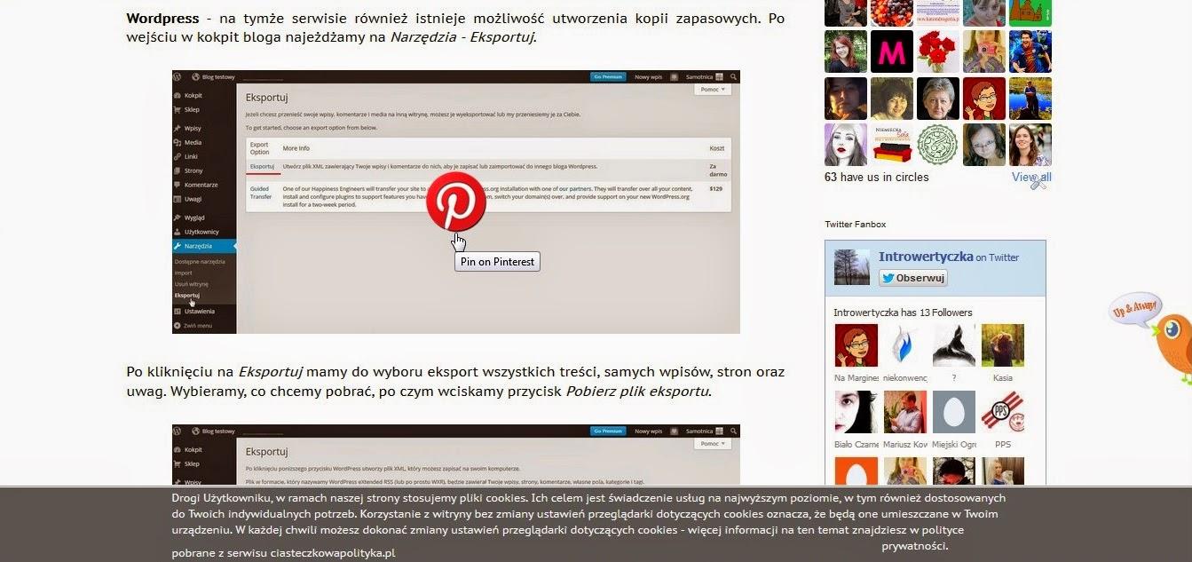 Przycisk Pinterest na obrazku
