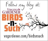 Virginia Gardener, Birds 'n Such