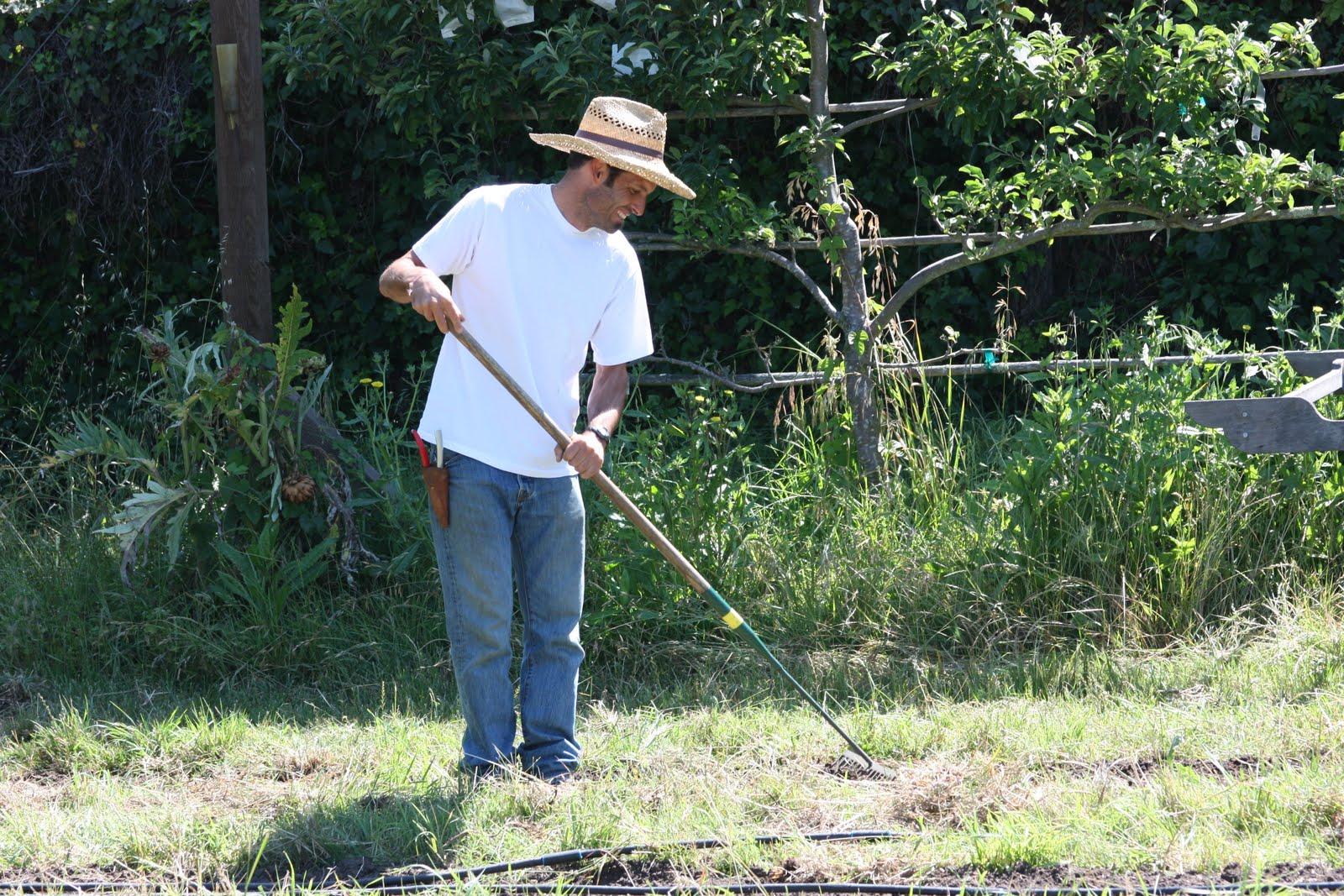 geoff the cheerful gardener shows off expert raking technique