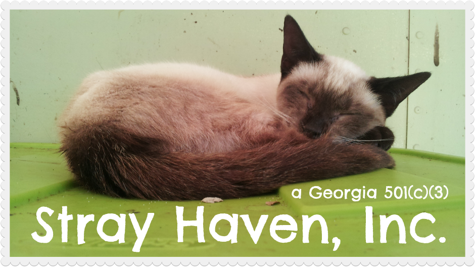 Stray Haven, Inc.