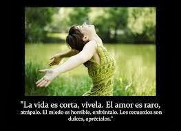 Frases Para La Vida:  La Vida Es Corta Vívela El Amor Es Raro