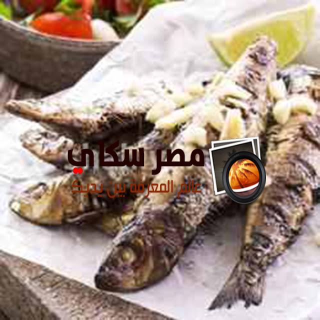 طريقة عمل  صينية السمك السردين فى الفرن
