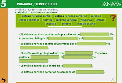 http://www.ceipjuanherreraalcausa.es/Recursosdidacticos/QUINTO/datos/02_Cmedio/datos/05rdi/ud05/02.htm
