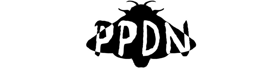 Petit Papillon De Nuit PPDN
