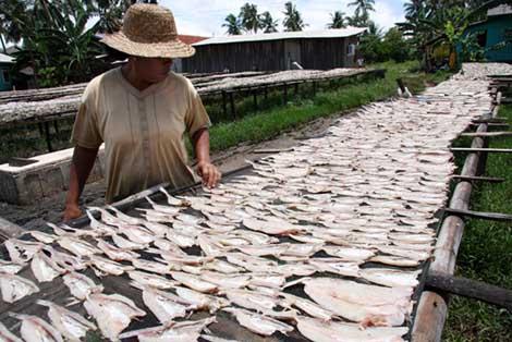 ikan asin Pengawetan ikan tradisional ~ Blog Anak Nelay