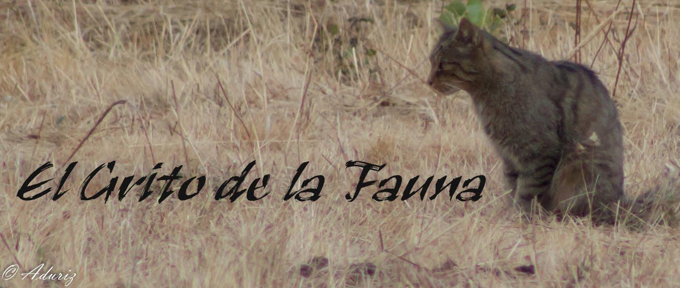 El Grito De La Fauna
