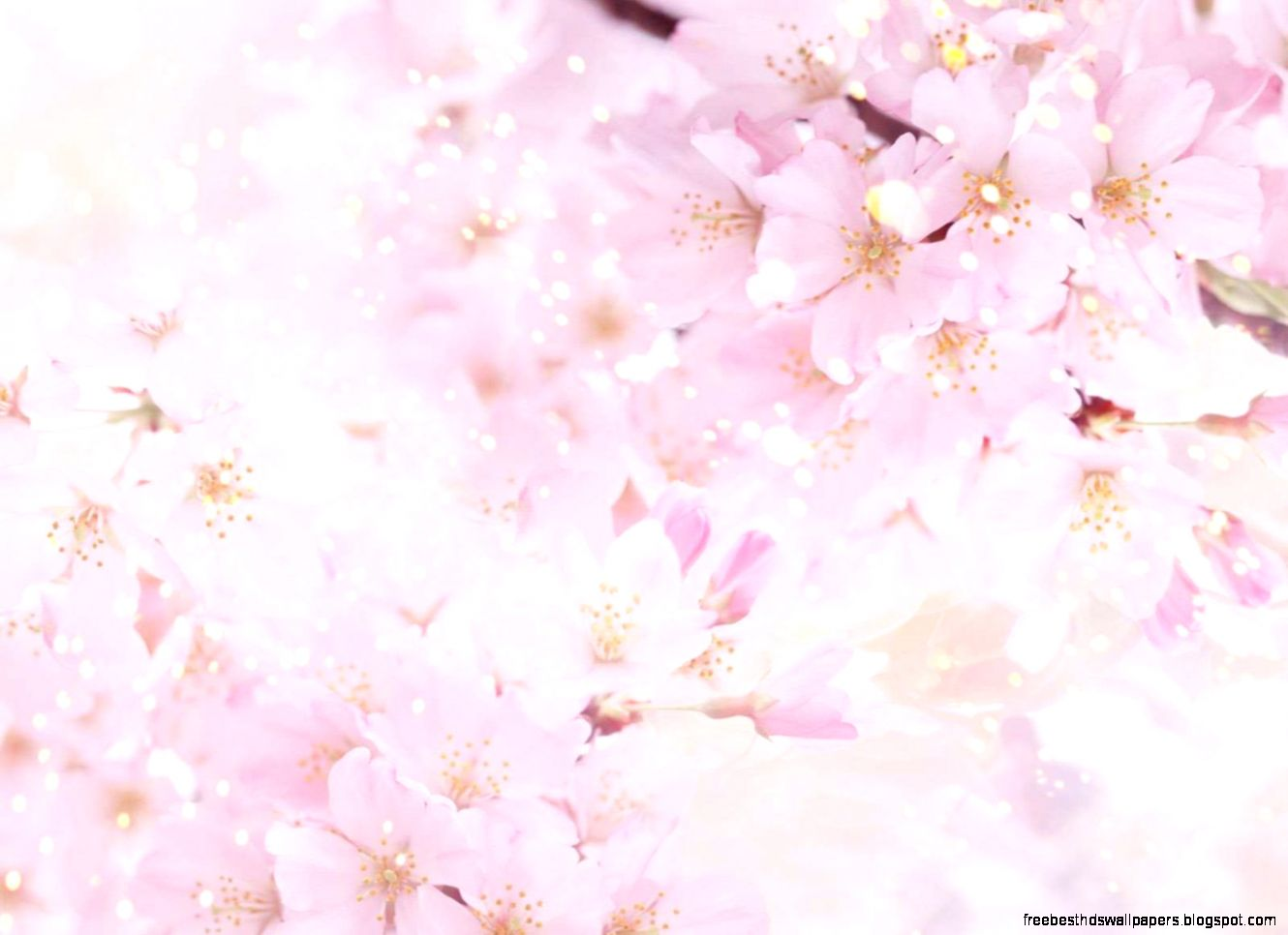 Pretty flower background pictures free best hd wallpapers view original size pretty flower backgrounds wallpaper cave image source from this mightylinksfo