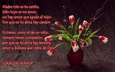 Mensajes con flores para el Día de las Madres VIII