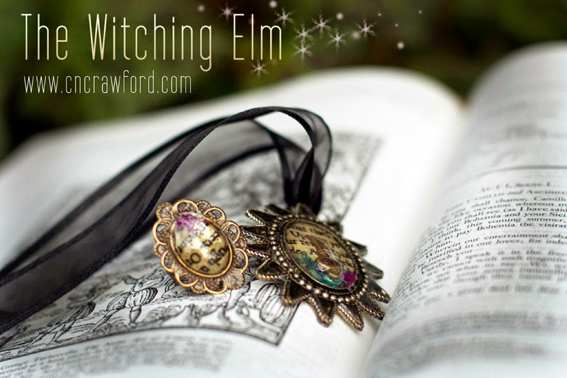 http://cover2coverblog.blogspot.com/2015/02/blog-tour-review-witching-elm-by-c-n.html