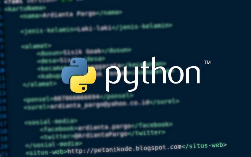 python XML programming