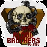 Blood Brothers BJJ Blog