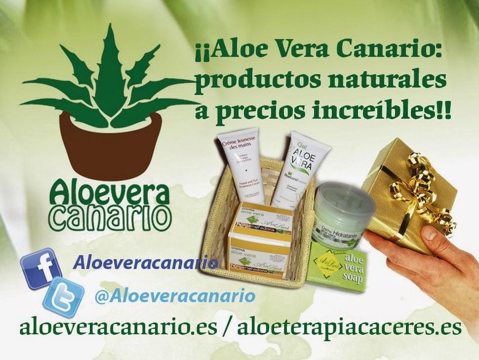 Aloe Vera Canario