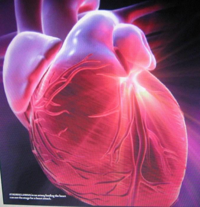 Problemas del corazón: a ellas le duele menos