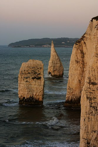Morning at the Old Harry Rocks
