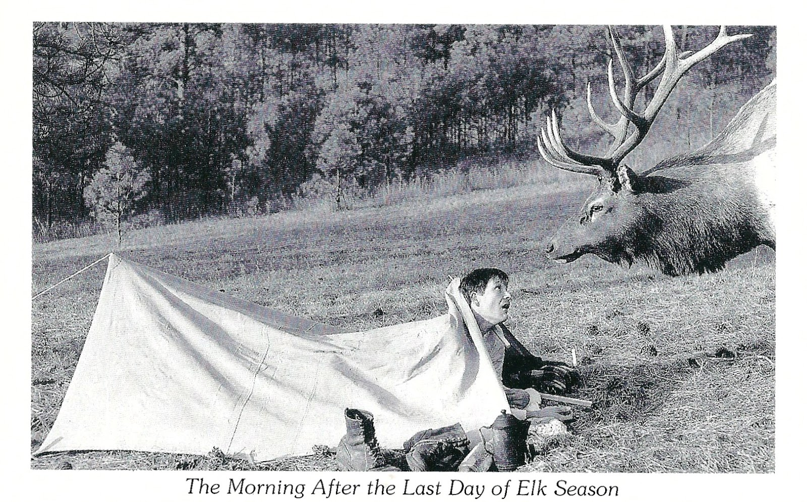 Funny Hunting Quotes My Favorite Funny Postcards Last Day Of Elk Hunting Season