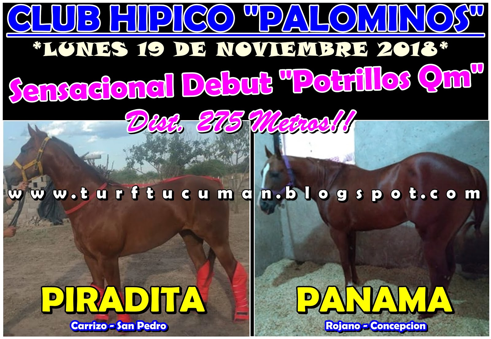 PIRADITA VS PANAMA