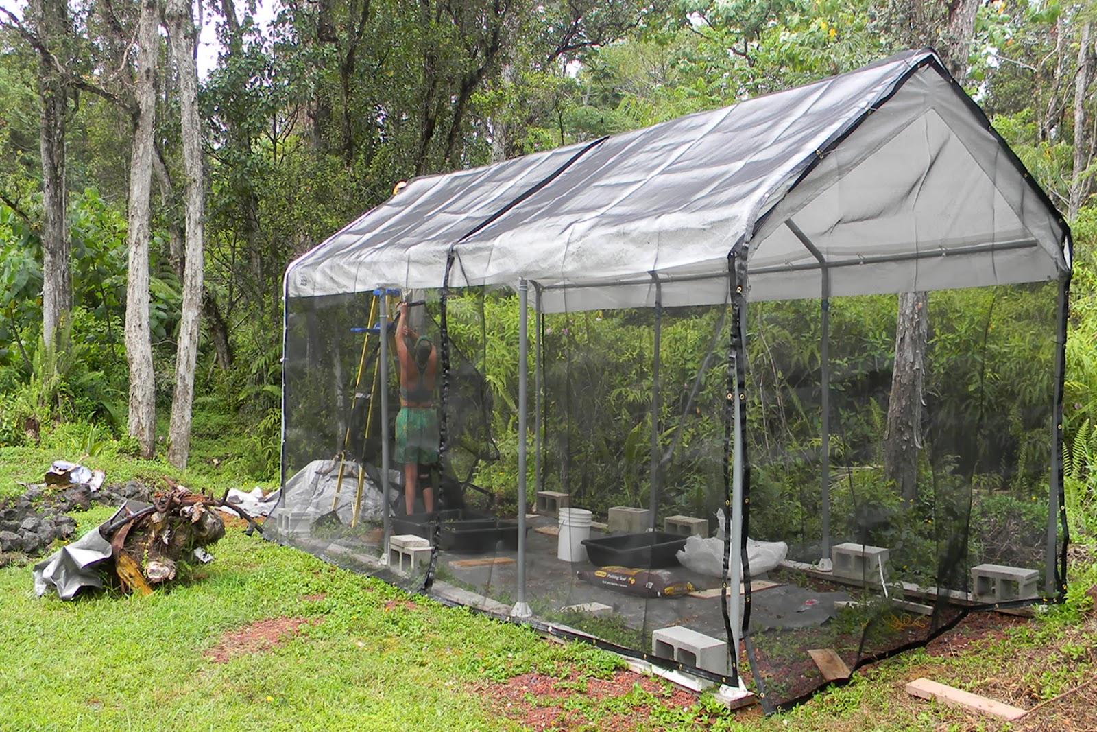 shadehouse2 haysmer hawaii soon to be shade house,Shade House Plans
