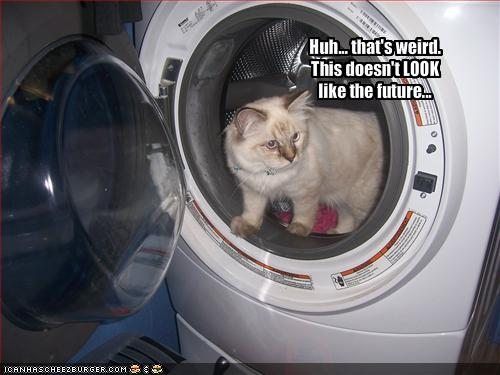 Funny Washing Machine ~ Funny picture clip best of cool cat pictures