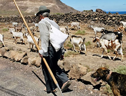 Decires tradicionales canarios: Cada cabrero guarda sus cabras