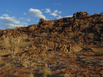 landscape photo, living desert