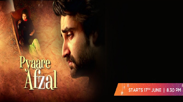 Pyaare Afzal Zindagi TV serial wiki, Full Star-Cast and crew, Promos, story, Timings, TRP Rating, actress Character Name, Photo, wallpaper