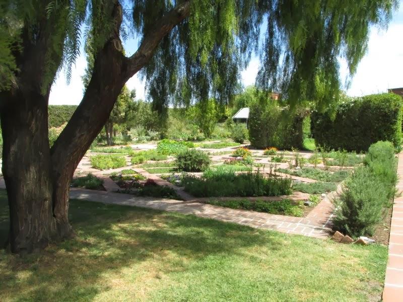 El cuexcomate salidas de campo 2014 jard n etnobot nico for Jardin 3 marias puebla