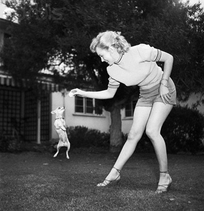 marilyn monroe con pantalones cortos en el jardín dando de comer a un chiguagua
