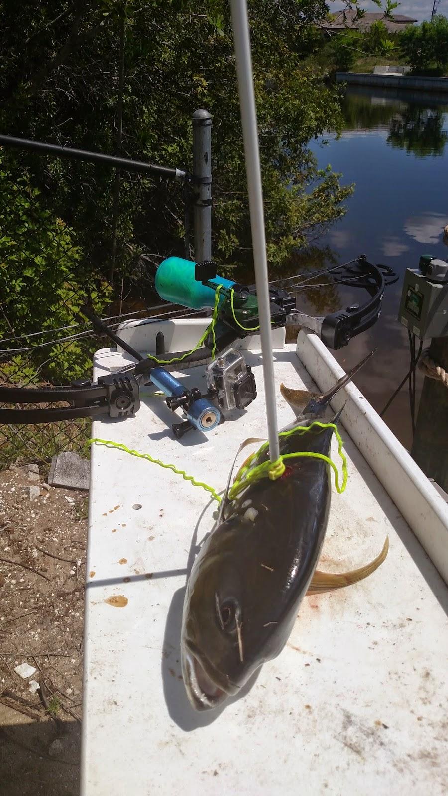 Bowfishing 6lb Jack in Florida