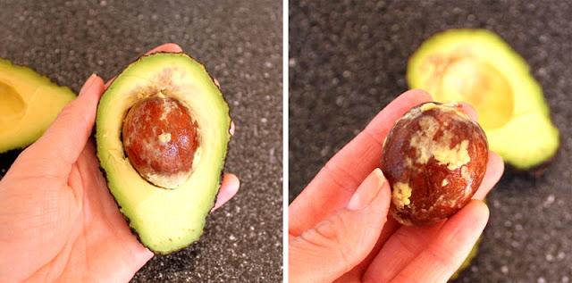 Hvordan Gro En Avokadoplante Spire Avokado