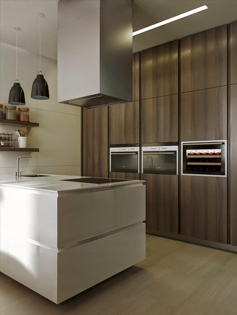 Modern Kitchen Designs Wood