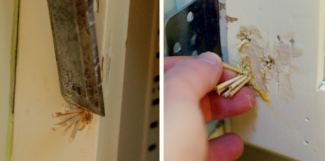 take the side street how to fix a stripped screw hole with toothpicks. Black Bedroom Furniture Sets. Home Design Ideas