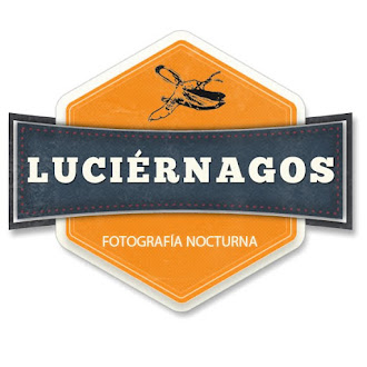 Luciérnagos