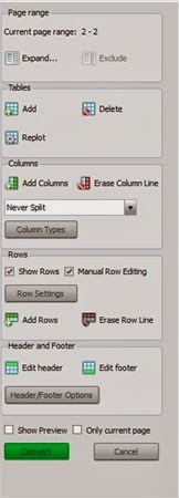 Custom options allow you to define the rows and columns to make sure that everything is set up perfectly before you begin the conversion