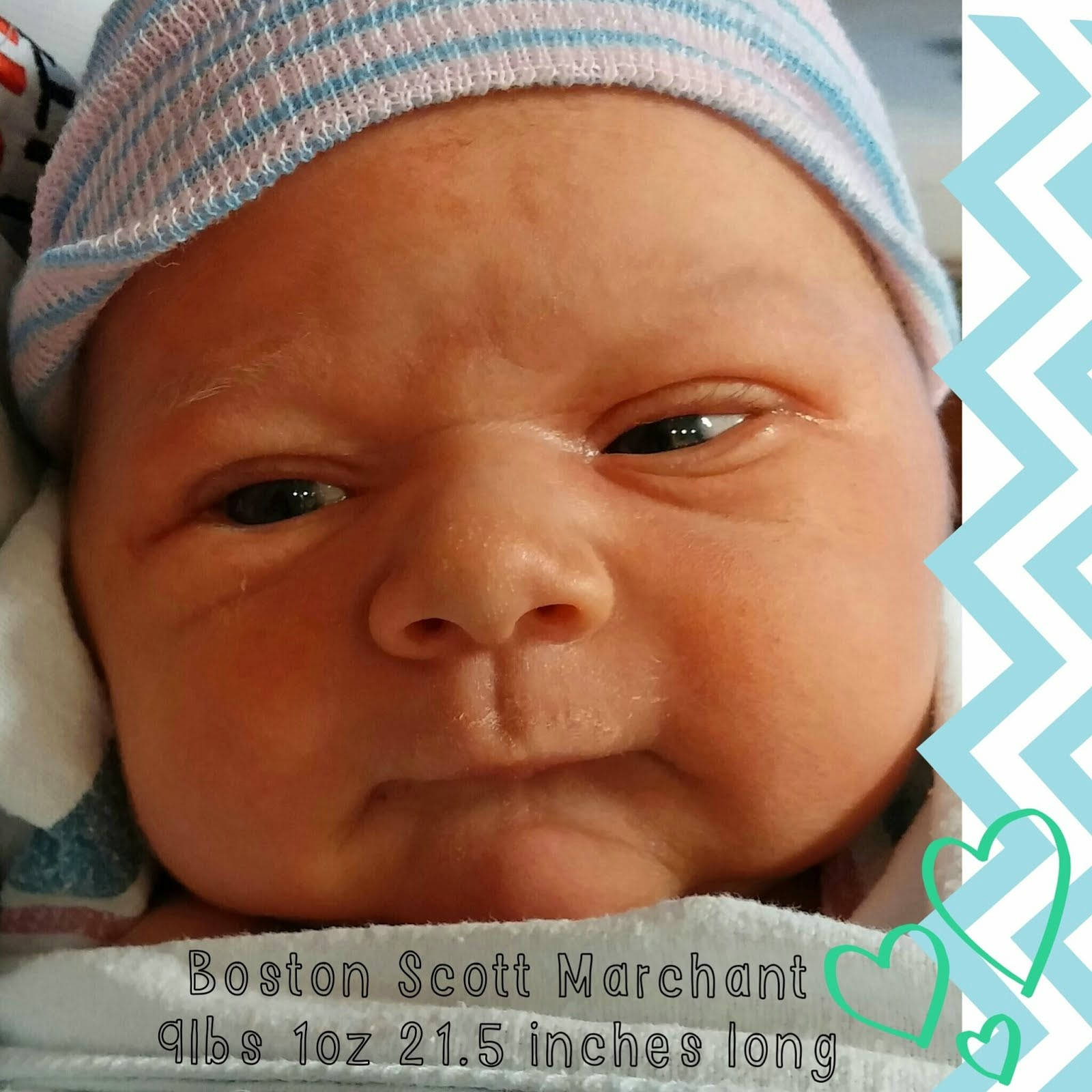 Boston Scott Marchant