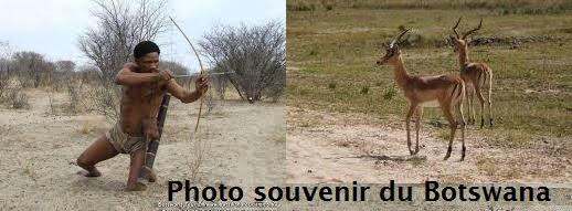 revendication du droit a la chasse obtenue par les bushmen grace au soutient de lorganisation Survival International