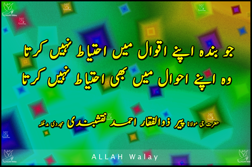 Joo Apny Aqwaal Me Ahtiyaat Nhii karta Woo - images of urdu aqwaals and quotes