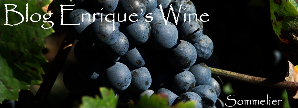 BLOG ENRIQUE´S WINE